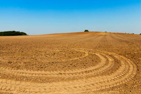 arando: photographed close-up of plowed agricultural field for planting a new crop Foto de archivo