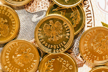 photographed close-up Polish money - zloty, banknotes and coins Stock Photo