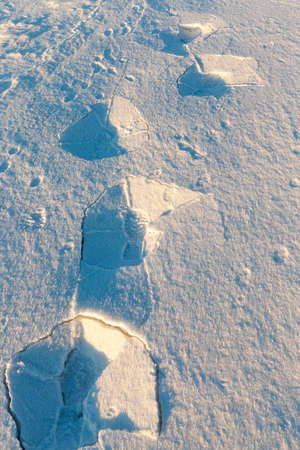 sheeted: Photo snow, close-up Stock Photo