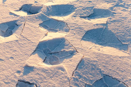 convexity: tracks in the snow