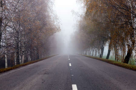 itinerary: asphalted road, autumn Stock Photo