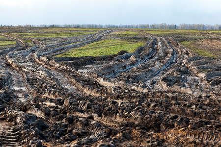 road in a field
