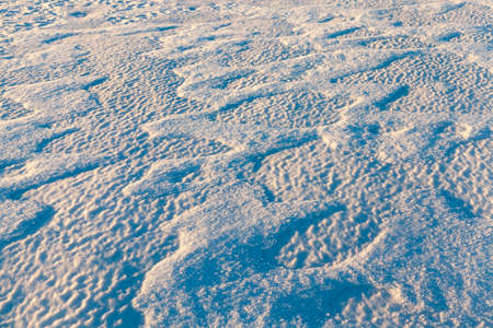 minutiae: land covered with snow