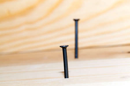 hammered into the plank of pine wood floor several metal nails during the construction work. Focus on the first nail. photo close up
