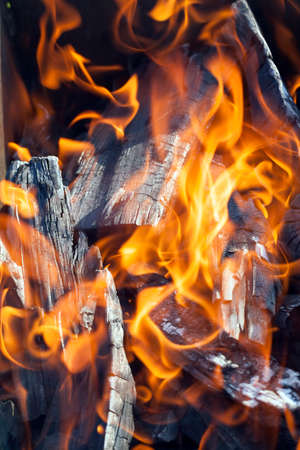 Orange fire on a black background. a large amount of timber and logs for breeding bonfires. The bonfire is diluted to get the heat when cooking a barbecue. Stock Photo