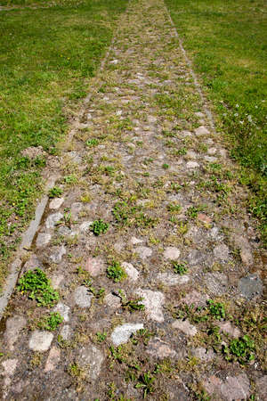 Stone road for people. Photo close-up. Through the stones grew green grass and moss