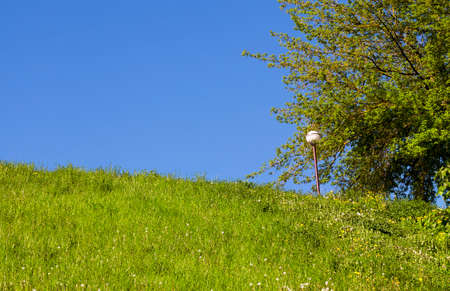 lamp shade: White lamp on the street. Photo on a background of blue sky and green grass in spring. on the right grows trees