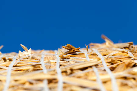 a yellow dry straw in a stack of wheat on the field. photo Close-up of several mown stems on a background of blue sky. small depth of field
