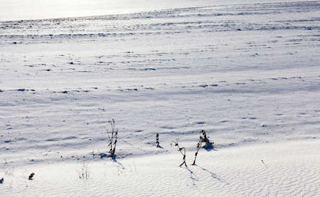 snow lying in snowdrifts after the last snowfall, Photo in the winter in the field,