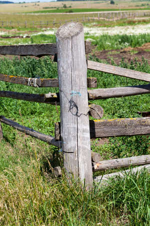 old gray wooden fence on the farmer's field, which limits the movement of livestock