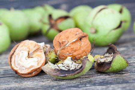 Walnuts on a wooden table, open from green peel, close-up of useful food harvest