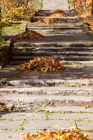 An old staircase in the park in the autumn season, on a concrete road with a staircase lies fallen foliage collected by a janitor in a pile