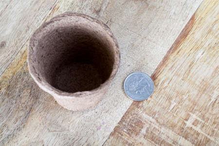 American coin and a peat pot for seedlings lying together, closeup on a table in a rural agricultural production company