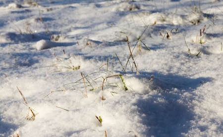 Snow drifts in winter - the territory covered with snow in the winter season. Photo taken in close-up 版權商用圖片