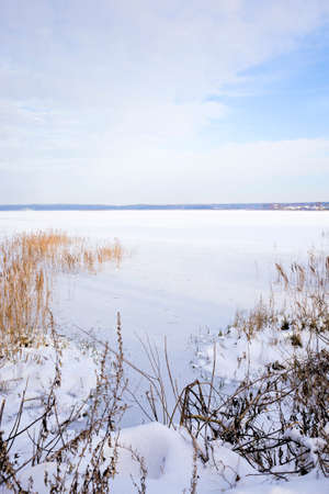 covered with fluffy white fresh snow frozen lake and forest in winter, landscape in cold frosty winter conditions