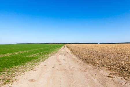 road for the movement of agricultural machinery among agricultural fields, part of the field with plants, the second plowed Imagens