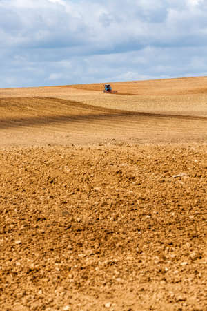 an agricultural field that is farmed by a tractor to produce a good crop of agricultural food products, sky Banco de Imagens