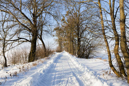snow-covered winter road 版權商用圖片