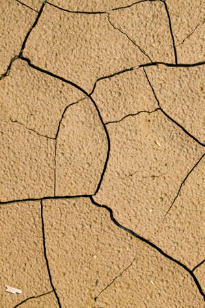 cracked soil in agricultural field