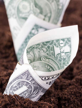 American dollars buried in the land as a concept to dig money into agriculture to no avail or effectively