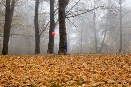 walking through the cloudy autumn Park boy with a red ball flying at the top of the trees