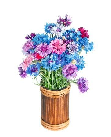 Bouquet of many beautiful multi-colored cornflowers flowers  in vase isolated on white background photo