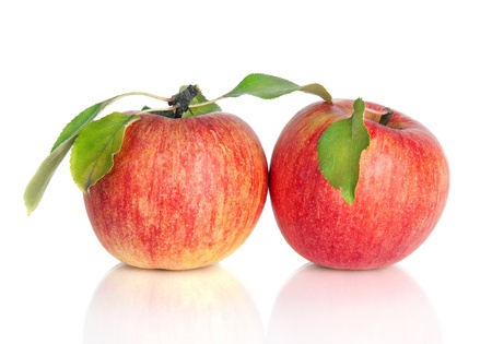 Two red apples with leaves, isolated on white