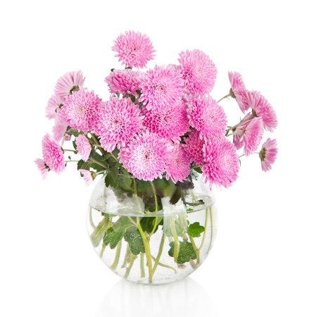 Bouquet of many beautiful chrysanthemum flowers in glass vase isolated on white background  photo