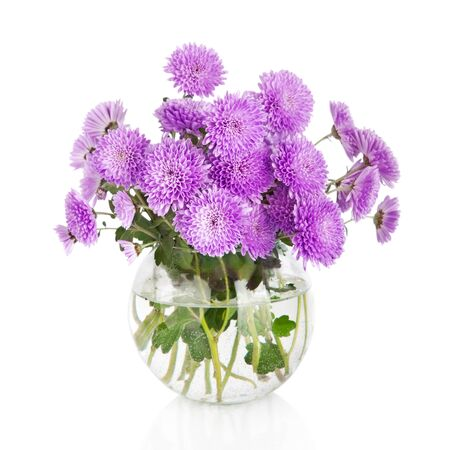 vase: Bouquet of many beautiful chrysanthemum flowers in glass vase isolated on white background