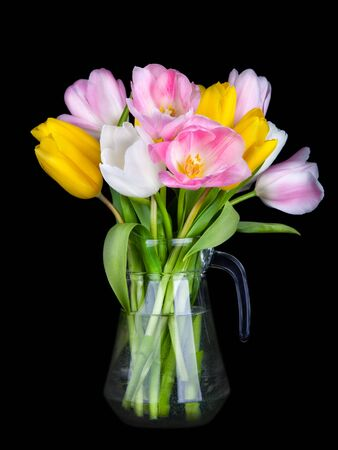Vase of Beautiful Tulips flowers isolated on black background Stock Photo