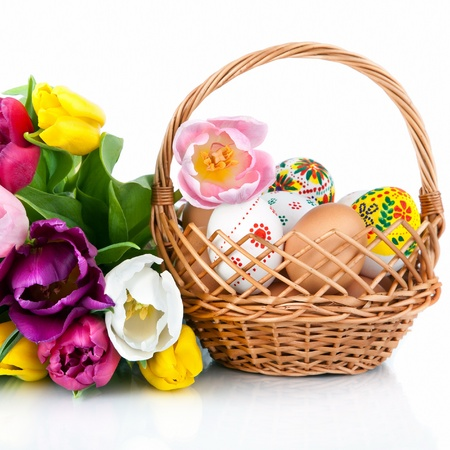 Easter egg decoration in basket and tulip flowers isolated on white background