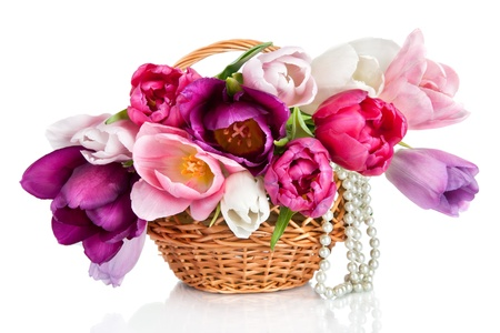 Basket with colorful bouquets of spring tulips flowers  isolated on white  background photo
