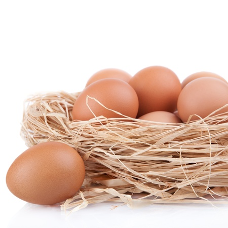 Macro shoot of brown eggs at hay nest in chicken farm, isolated on white photo