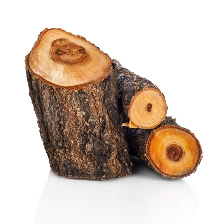 Stack of cut logs fire wood from tree. Renewable resource of a energy. Environmental concept. Stock Photo
