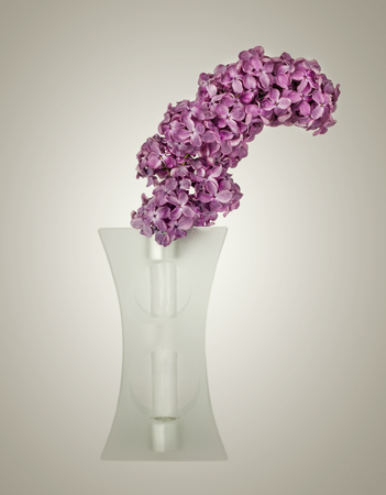 Bouquet of violet lilac in a vase  photo