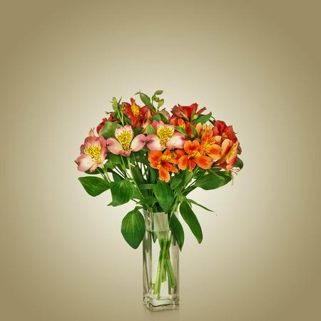 Alstroemeria flowers in vase