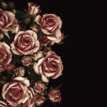 Belle Roses Bouquet Fleurs Fond Banque d'images