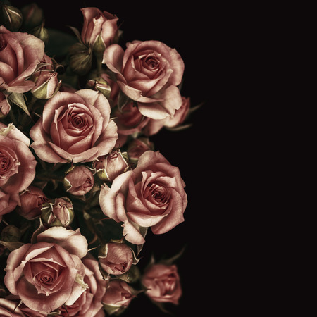 Beautiful Roses Bouquet Flowers Background Standard-Bild