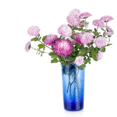 Beautiful bouquet of chrysanthemums flowers  in vase  isolated on white Stock Photo