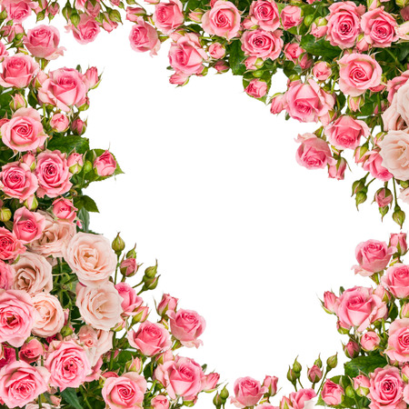Beautiful Roses Bouquet Flowers Background Stock Photo