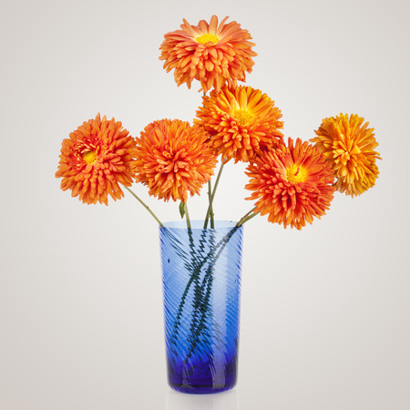 aster flowers: Beautiful bouquet of aster flowers in blue vase