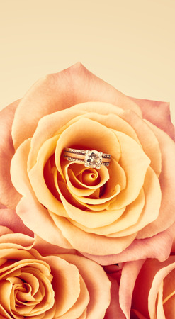 nestled: Pink Rose and diamond ring nestled inside. Bouquet of blossoming roses Stock Photo