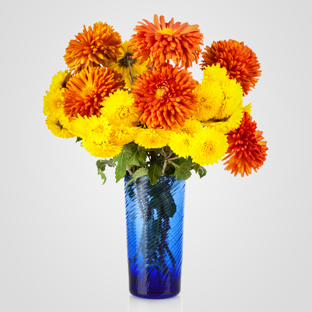 aster flowers: Beautiful bouquet of aster flowers in vase