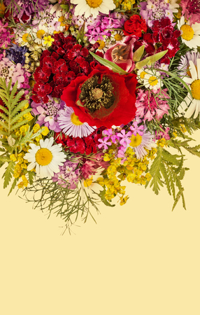 Beautiful wildflowers bouquet background. Cornflower, camomile, carnation, hand bell, poppy and over flowers