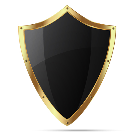 thrusting: Glittering black shield with gold body that have rivets on the perimeter