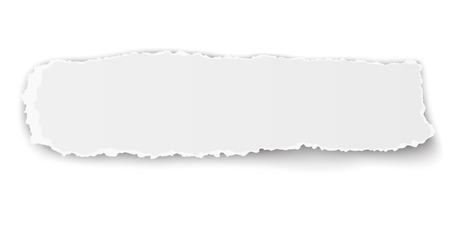 Vector längliche zerlumpten Stück Papier auf weißem Hintergrund