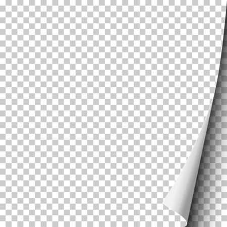 Foglio vettoriale di carta trasparente con angolo arricciato per testo, annuncio e altro. Modello di carta di design.