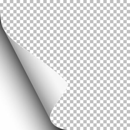 Transparent paper with lower left curl and white background under it. Template paper design. Vector illustration.