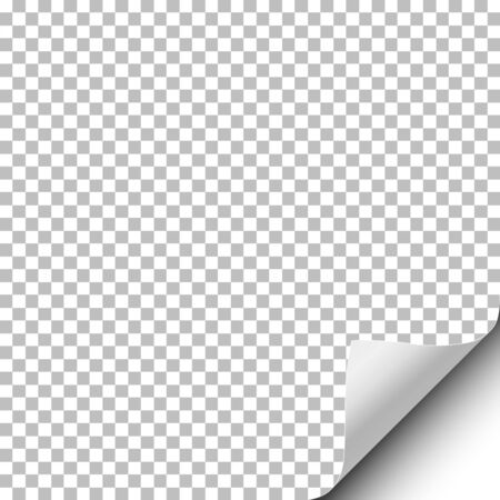 Vector transparent sheet of paper with curled lower right corner and white backdrop under it. Template paper design. Ilustração