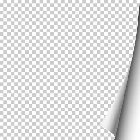 Vector sheet of transparent paper with curled corner. White background under it. Template paper design. Ilustração Vetorial